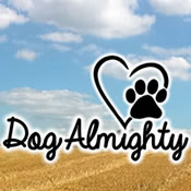 Dog Almighty | Professional Dog Walker